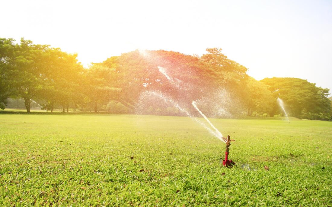 professional lawn sprinklers working